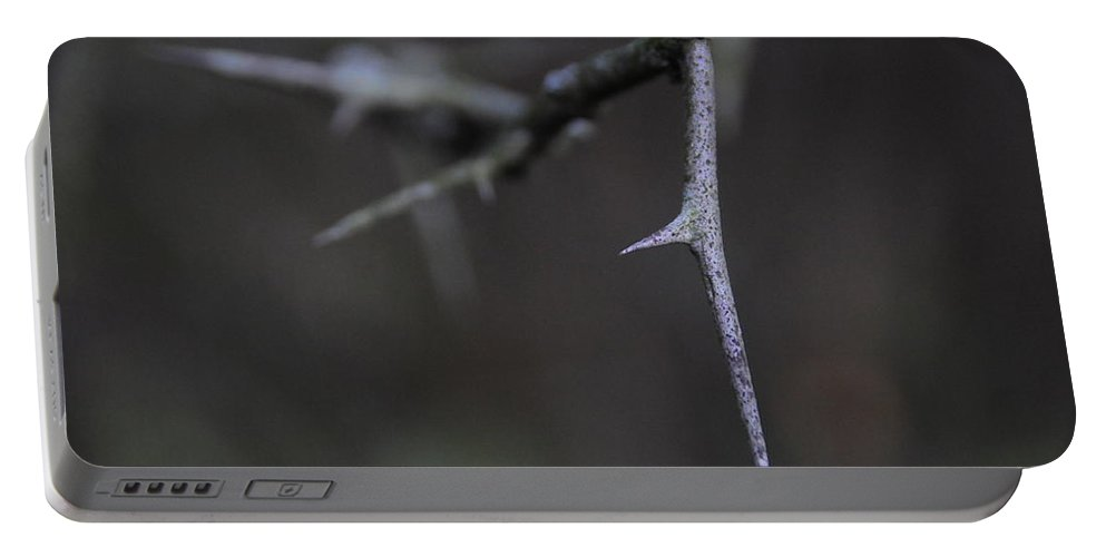 Thorn Portable Battery Charger featuring the photograph Thorn by David Arment