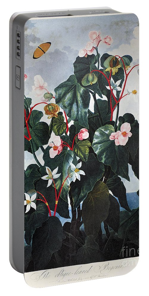 1800 Portable Battery Charger featuring the photograph Thornton: Begonia by Granger