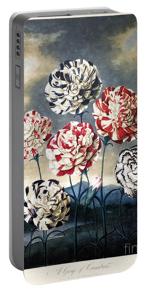 1803 Portable Battery Charger featuring the photograph Thornton: Carnations by Granger