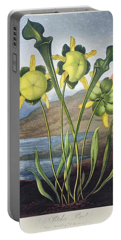 1803 Portable Battery Charger featuring the photograph Thornton: Pitcher Plant by Granger