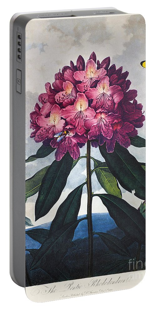 1802 Portable Battery Charger featuring the photograph Thornton: Rhododendron by Granger