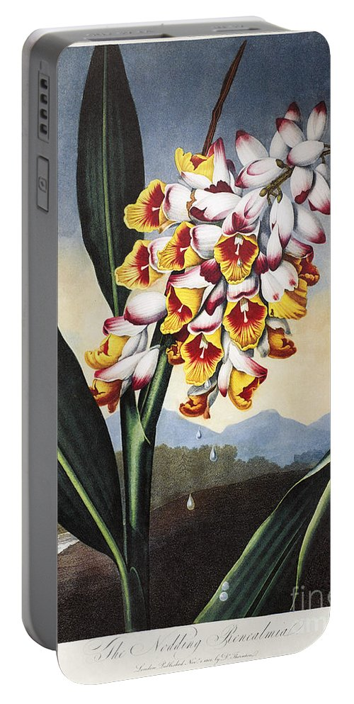 1801 Portable Battery Charger featuring the photograph Thornton: Shell Ginger by Granger