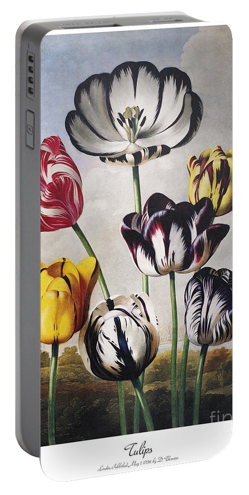 1798 Portable Battery Charger featuring the photograph Thornton: Tulips by Granger
