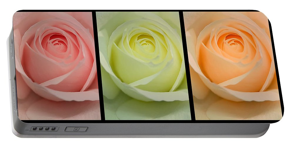 Roses Portable Battery Charger featuring the photograph Three In A Row by Brian Roscorla
