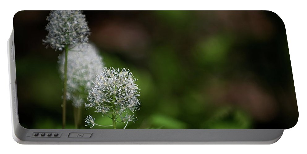 macro Photography Portable Battery Charger featuring the photograph Three Of A Kind by Paul Mangold
