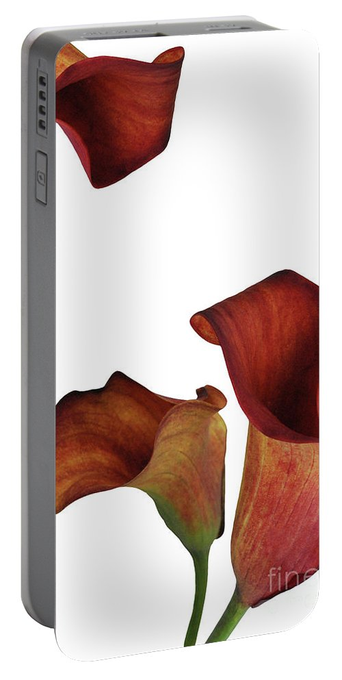Rust Portable Battery Charger featuring the photograph Three Rust Calla Lilies by Heather Kirk