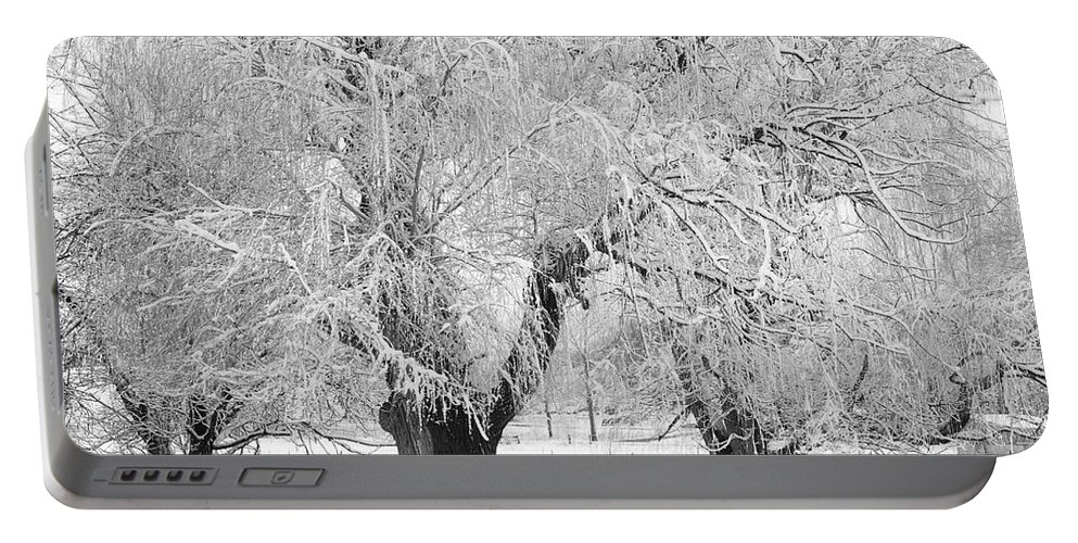 Black And White Portable Battery Charger featuring the photograph Three Trees In The Snow - Bw Fine Art Photography Print by James BO Insogna
