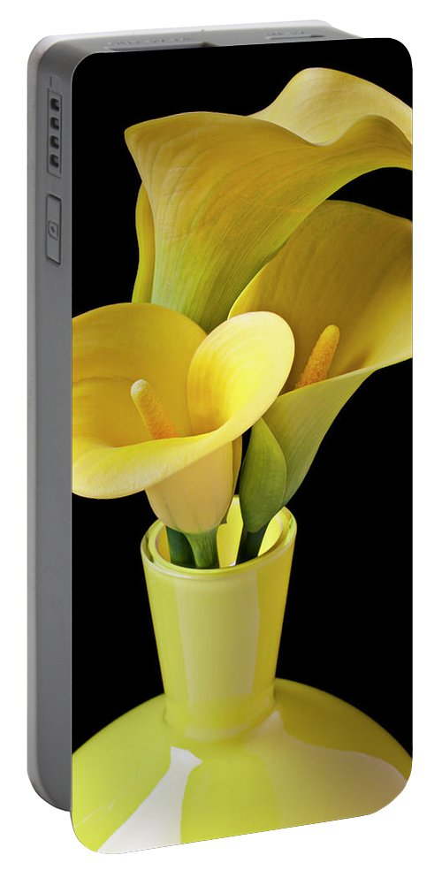 Calla Lily Portable Battery Charger featuring the photograph Three Yellow Calla Lilies by Garry Gay