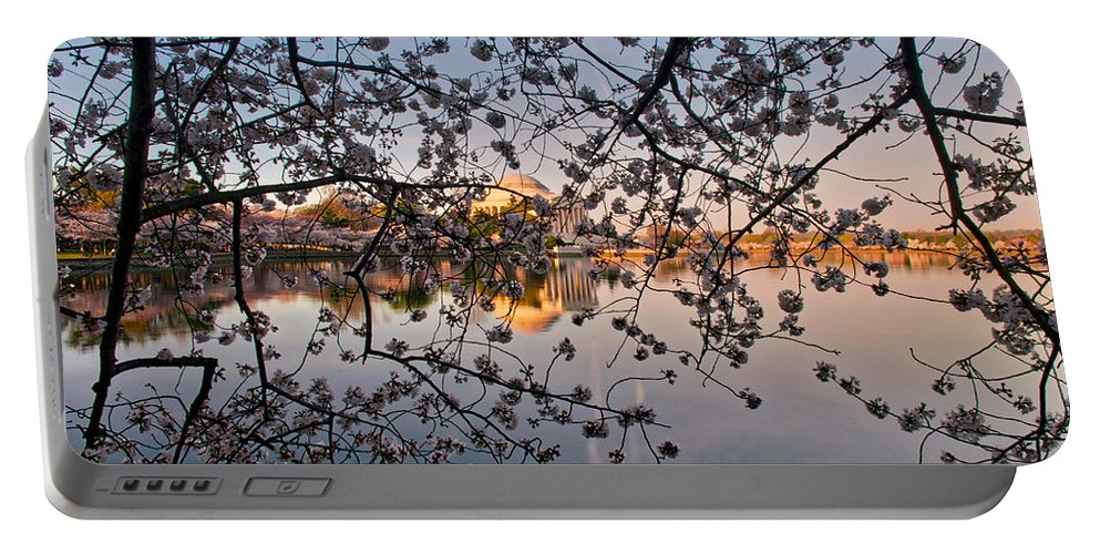 American Kiwi Photo Portable Battery Charger featuring the photograph Through The Cherry Tree by Mark Dodd