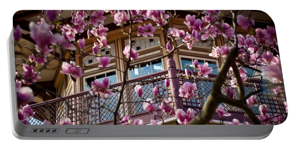 American Kiwi Photo Portable Battery Charger featuring the photograph Through The Flowers by Mark Dodd