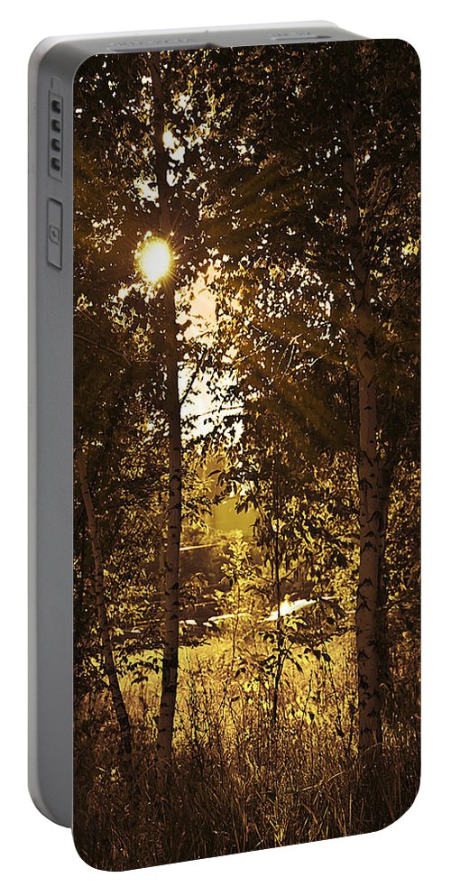 Art Portable Battery Charger featuring the photograph Through The Trees by Svetlana Sewell