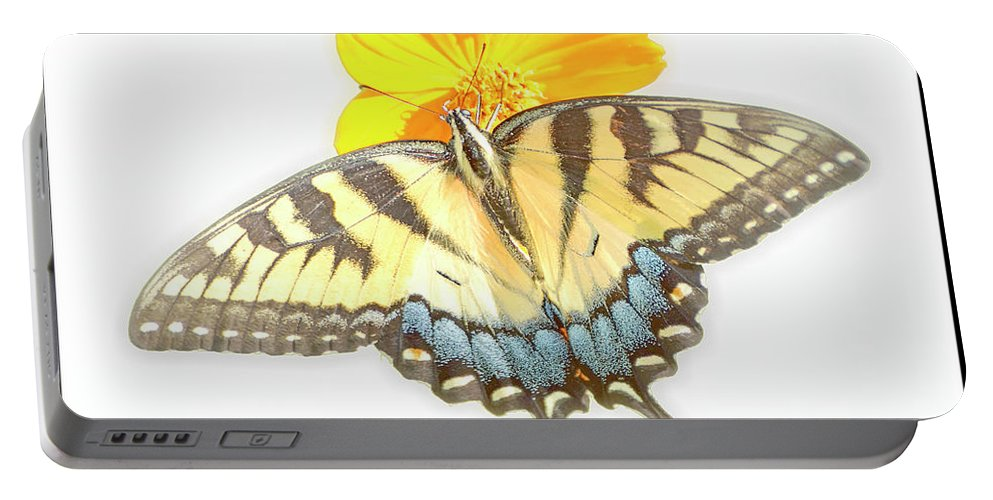 Tiger Swallowtail Butterfly Portable Battery Charger featuring the digital art Tiger Swallowtail Butterfly, Cosmos Flower by A Gurmankin