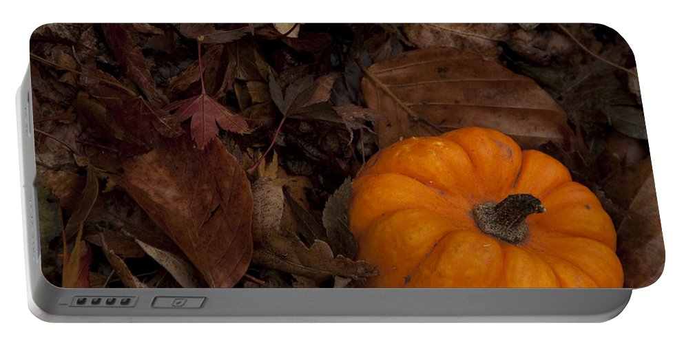 Pumpkin Portable Battery Charger featuring the photograph Tiny Pumpkin by Steven Natanson