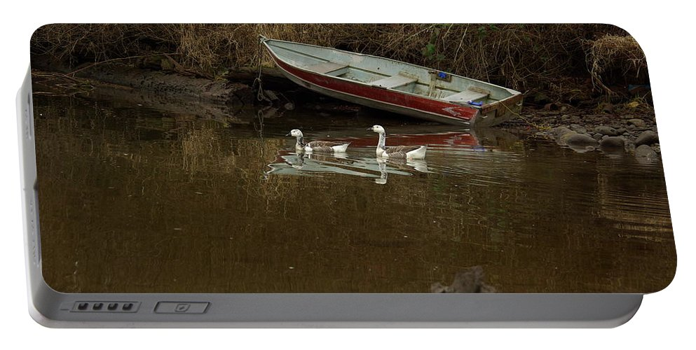 Geese Portable Battery Charger featuring the photograph To Float Or Not To Float by Cindy Johnston