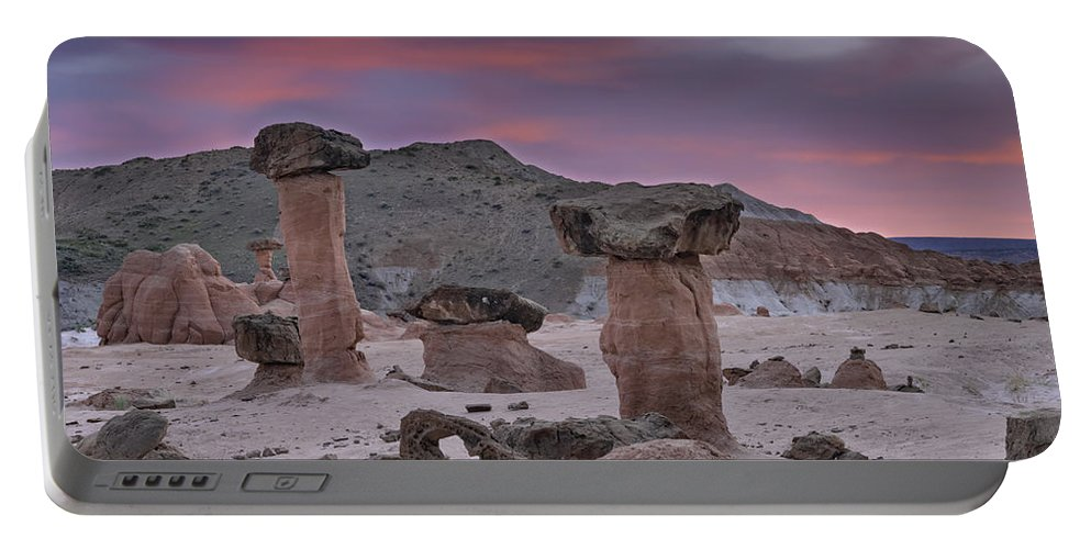 Balance Portable Battery Charger featuring the photograph Toadstools by Leland D Howard