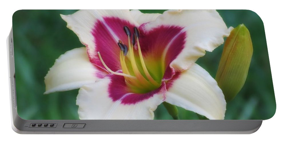 Daylily Portable Battery Charger featuring the photograph Todd Monroe - Daylily by MTBobbins Photography