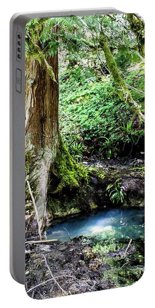 Mount Rainier Portable Battery Charger featuring the photograph Tolkien's Spring by Adam Morsa
