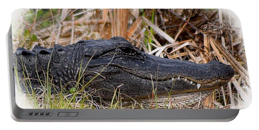 Alligator Portable Battery Charger featuring the photograph Alligator Toothy Grin 2 by Sheri McLeroy