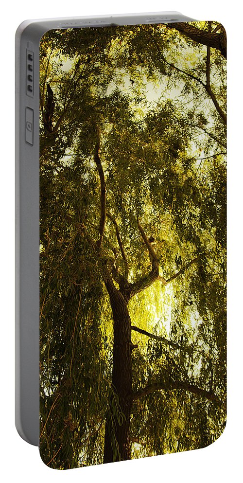 Art Portable Battery Charger featuring the photograph Top View by Svetlana Sewell