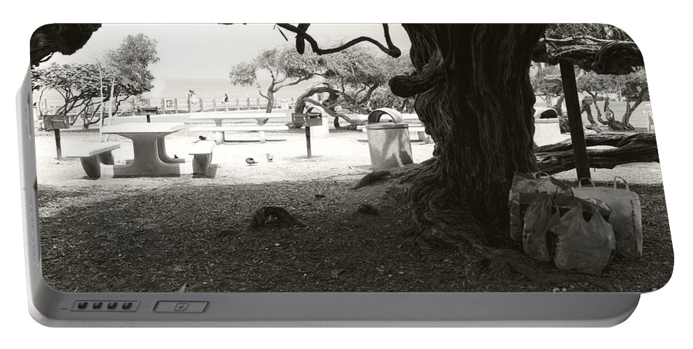 La Jolla Portable Battery Charger featuring the photograph Torrey Pines Baggage Claim by Heather Kirk