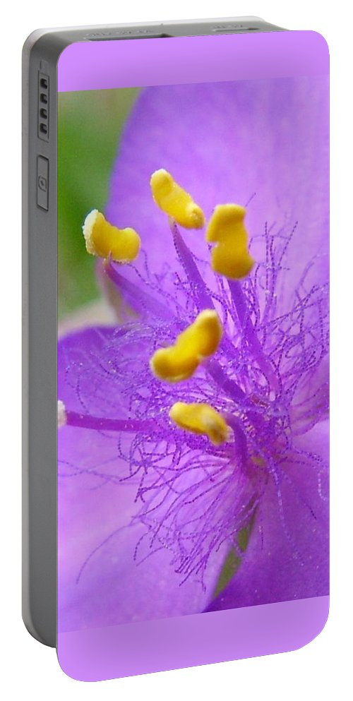 Flower Portable Battery Charger featuring the photograph Tradescantia Andersoniana by Peter Antos