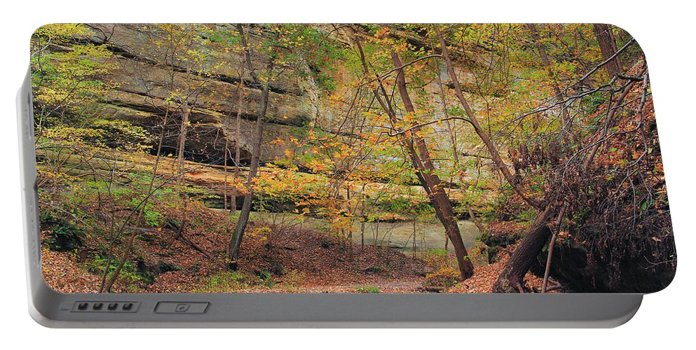 Tonty Canyon Portable Battery Charger featuring the photograph Trail In Tonty Canyon by Greg Matchick