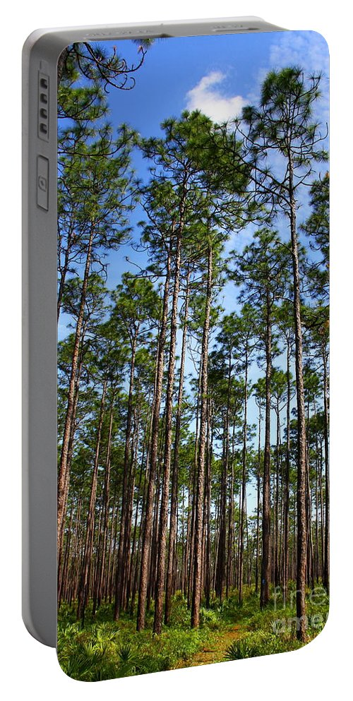 Wright Lake Loop Trail Portable Battery Charger featuring the photograph Trail Through The Pine Forest by Barbara Bowen