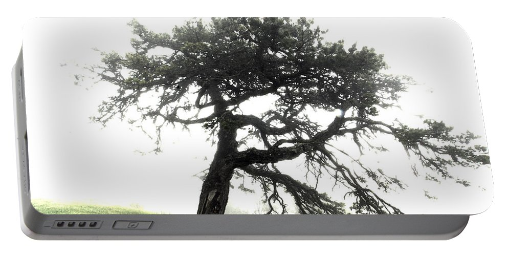 Hdr Portable Battery Charger featuring the photograph Tree by Alex Grichenko