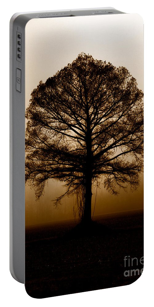 Trees Portable Battery Charger featuring the photograph Tree by Amanda Barcon