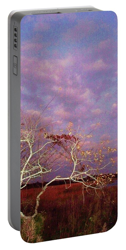Trees Portable Battery Charger featuring the painting Tree And Sky At Cape May Point State Park Nj by Eric Schiabor