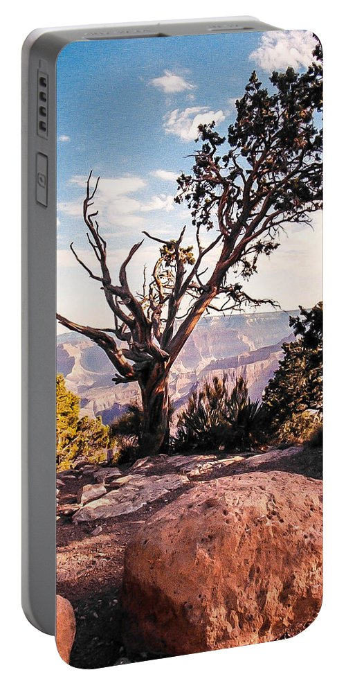 Grand Canyon Portable Battery Charger featuring the photograph Tree At Moran Point by Mike Wheeler