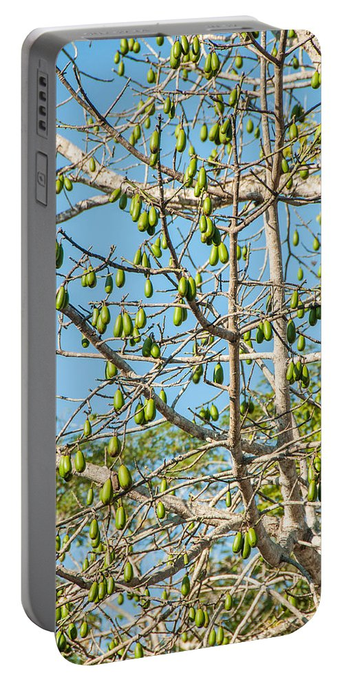 Mexico Quintana Roo Portable Battery Charger featuring the digital art Tree At The Coba Ruins by Carol Ailles