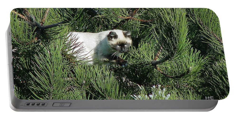 Green Portable Battery Charger featuring the photograph Tree Bandit by Shirley Heyn