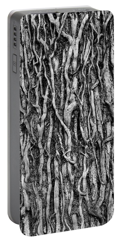Abstract Portable Battery Charger featuring the photograph Tree Bark Abstract by Tom Mc Nemar