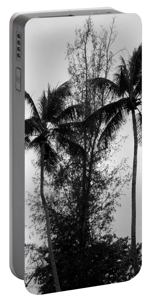 Palms Portable Battery Charger featuring the photograph Tree Between The Trees by Deborah Crew-Johnson