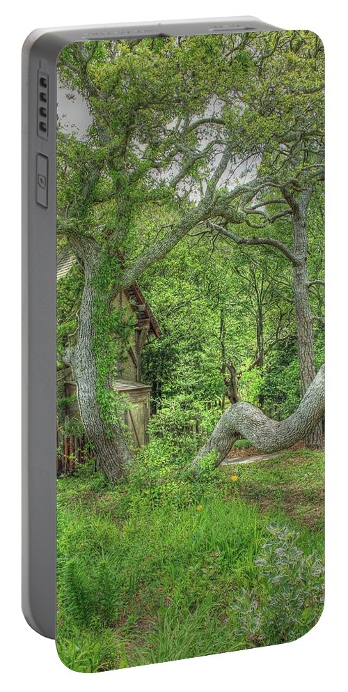 Scenic Portable Battery Charger featuring the photograph Tree Curves Two by Douglas Settle