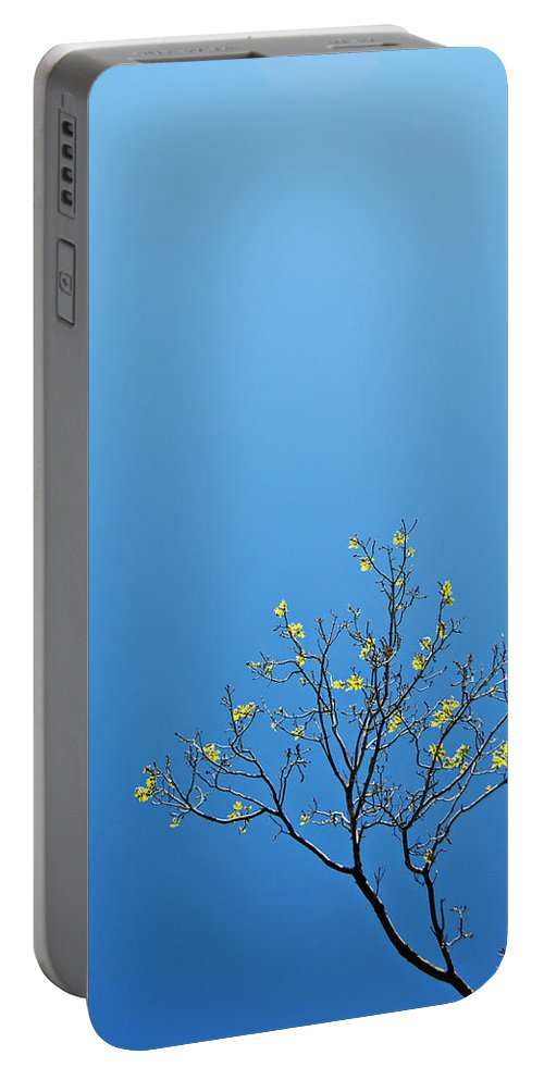 Tree Portable Battery Charger featuring the photograph Tree In Spring by Scott Sawyer