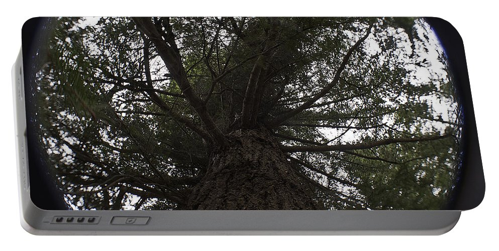 Art Portable Battery Charger featuring the photograph Tree In The Round by Clayton Bruster