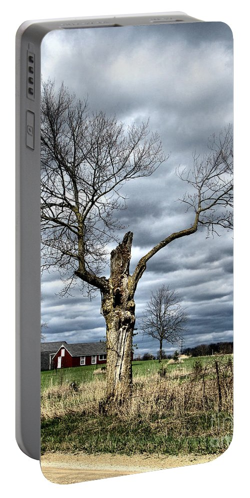 Tree Portable Battery Charger featuring the photograph Tree Man by September Stone