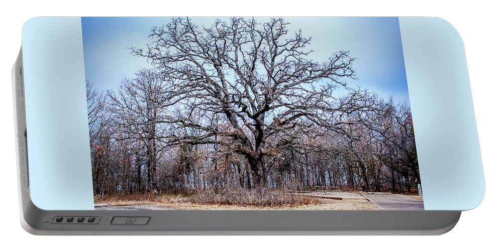 Tree Portable Battery Charger featuring the photograph Tree Of Beauty by Southern Sophia Skoolies