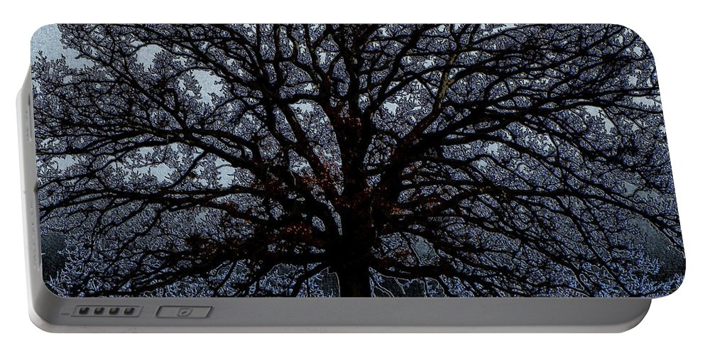 Tree Portable Battery Charger featuring the photograph Tree Of Life by September Stone