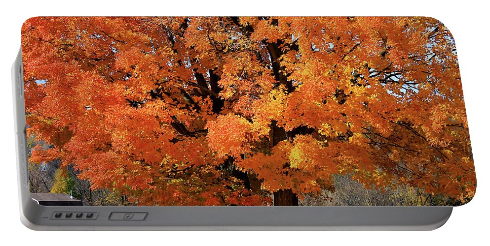 Autumn Portable Battery Charger featuring the photograph Tree On Fire by Deborah Benoit