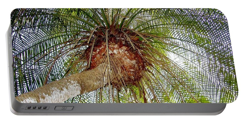 Tree Portable Battery Charger featuring the photograph Tree Spray by Deborah Crew-Johnson