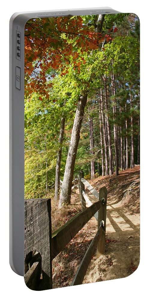 Tree Portable Battery Charger featuring the photograph Tree Trail by Margie Wildblood