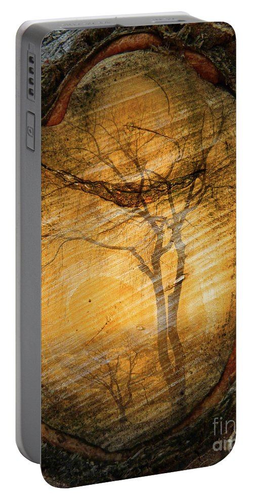 Trees Portable Battery Charger featuring the photograph Tree Within A Tree by Tara Turner