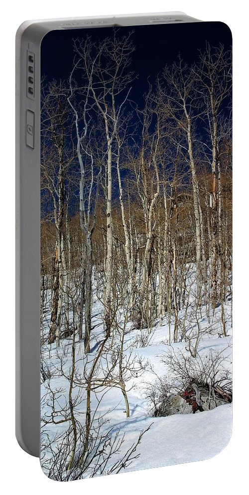 Trees Portable Battery Charger featuring the photograph Trees And Something In The Snow by Buck Buchanan