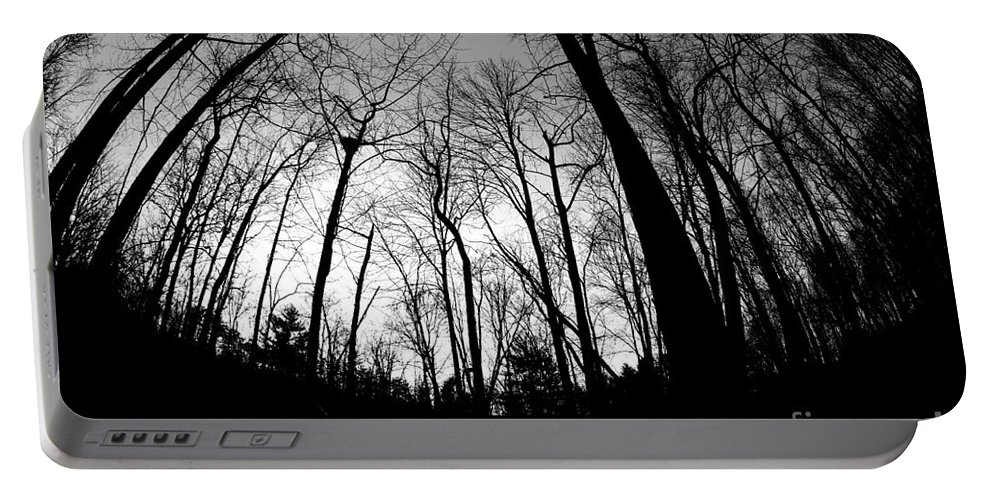 Landscape Portable Battery Charger featuring the photograph Trees At Dusk by Matty Archer