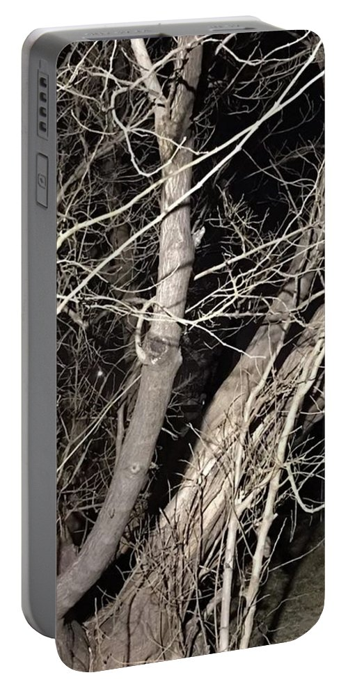 Trees Portable Battery Charger featuring the photograph Trees Closeup by Lorraine Coughlin