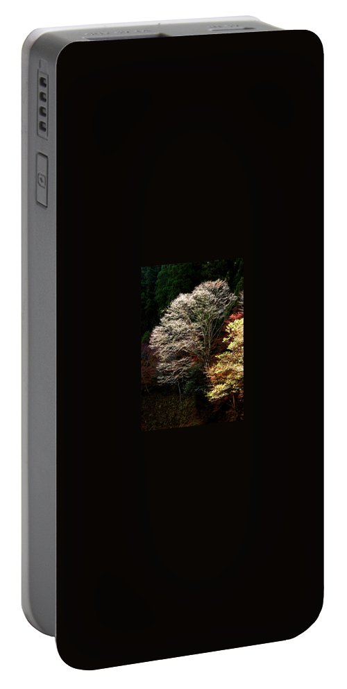 Trees Portable Battery Charger featuring the photograph Trees In Japan 11 by George Cabig