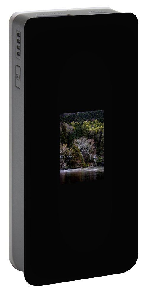 Landscape Portable Battery Charger featuring the photograph Trees In Japan 2 by George Cabig